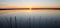"""Paskaita """"Viduržemio jūros Or lagūninis ežeras: valdymo iššūkiai, veikėjai ir teritorijos"""""""